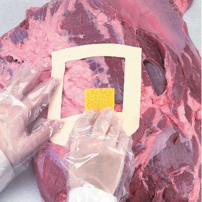 Kit for prøver av kjøtt - Mikrobiologi